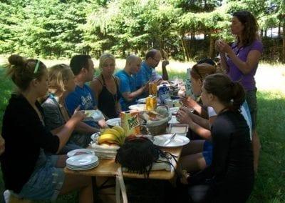 Picknick Friesland